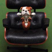 Nove25 gioielli presenta Dog Fever e Cat Fever la prima linea di gioielli per animali