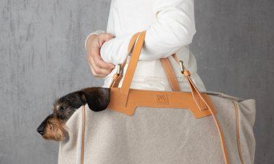 Borsa_per_trasporto_cani_2.8 design for dogs_Margaret_Cotone_